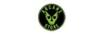 Arcane Store